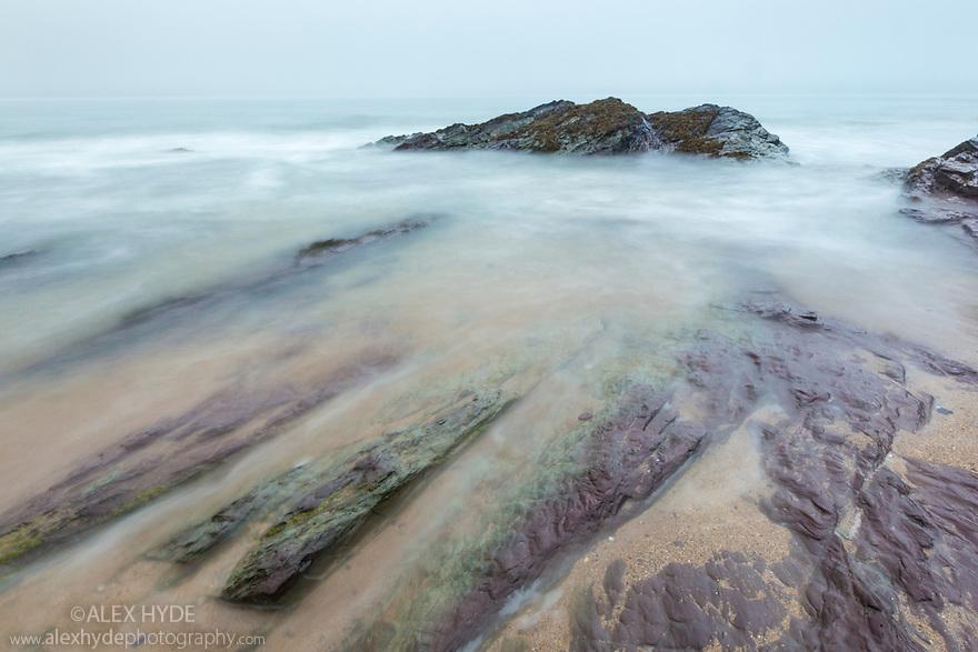 Daymer Bay, Cornwall, UK. May.