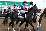 September 14, 2019 : Letmeno (#2, Calvin Borel) in the post parade of the Iroquois Stakes at Churchill Downs, Louisville, Kentucky. He finished fourth.  Trainer Ian R. Wilkes, owner Randall L. Bloch and Six Column Stables LLC (Brad Stephens) et al. By Twirling Candy x Wicked Mizz (Mizzen Mast).  Mary M. Meek/ESW/CSM