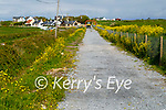 The fencing on the roadside removed on the Tralee to Fenit Greenway in Fenit.