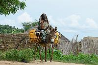 CHAD, Guéra, Bitkine, village Korbo, water tranport with donkey / TSCHAD , Guéra, Bitkine, Dorf Korbo der Volksgruppe Hadjarai o. Hadjerai, Wasser Transport mit Esel