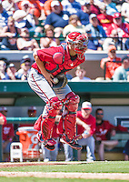 14 March 2014: Washington Nationals catcher Jose Lobaton catches a throw to the plate on a hop during a Spring Training game against the Detroit Tigers at Joker Marchant Stadium in Lakeland, Florida. The Tigers defeated the Nationals 12-6 in Grapefruit League play. Mandatory Credit: Ed Wolfstein Photo *** RAW (NEF) Image File Available ***