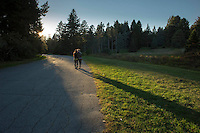 Arnold Arboretum, Boston, MA walking
