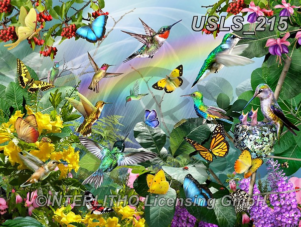 Lori, REALISTIC ANIMALS, REALISTISCHE TIERE, ANIMALES REALISTICOS, zeich, paintings+++++Hummingbird Family_10in_72,USLS215,#a#, EVERYDAY ,puzzle,puzzles