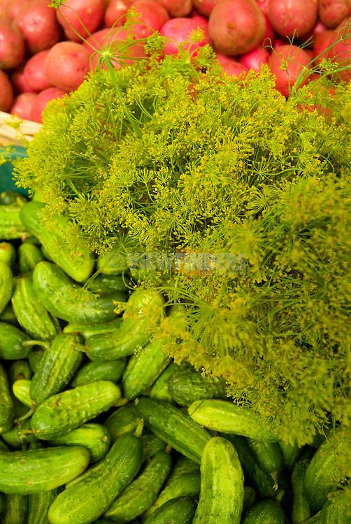 Fresh Vegetables at the Portland Farmer's Market