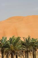 United Arab Emirates, Abu Dhabi, Sand dunes and palms at desert oasis