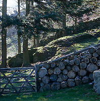 Stored logs are used to create a natural wall that surrounds the property