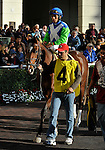 31 January 2009: Jockey Edgar Prado sits atop Nicanor in the paddock before the colt runs his first race, a maiden race at Gulfstream Park in Hallandale, Florida.