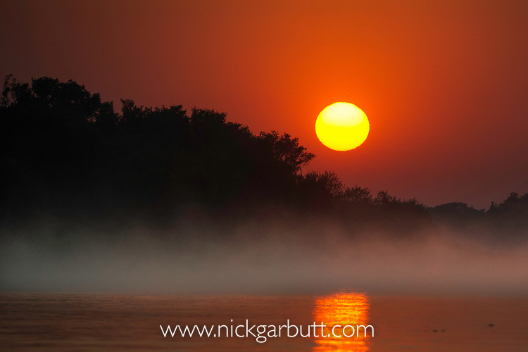 Sunrise on the Cuiaba River. After a cool night, ethereal mist swirls over the water's surface. Cuiaba River, Porto Jofre, northern Pantanal, Mato Grosso, Brazil