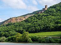 Burg Sooneck am Rhein, Rheinland-Pfalz, Deutschland, Europa, UNESCO Weltkulturerbe<br /> Castle Sooneck at river Rhine, Rhineland-Palatinate, Germany, Europe