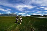Spring Creek, Patagonia