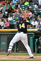 John Buck (14) of the Salt Lake Bees at bat against the Reno Aces in Pacific Coast League action at Smith's Ballpark on July 23, 2014 in Salt Lake City, Utah.  (Stephen Smith/Four Seam Images)