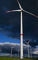 GERMANY, MV, Parchim, windfarm with Vestas wind turbines / DEUTSCHLAND, Parchim, Windpark mit Vestas Windturbinen