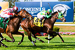 ELMONT, NEW YORK - SEPT 30:  Seabhac #4, ridden by Luis Saez, wins the Pilgrim Stakes, for 2-year olds, at Belmont Park on September 30, 2017 in Elmont, New York. (Photo by Sue Kawczynski/Eclipse Sportswire/Getty Images)