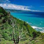 Coastline, Sinkyone Wilderness State Park, Lost Coast, Mendocino County, California