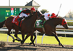 08 October 2011.  Holiday for Kitten and Kendrick Camouche win the 31st running of the Thoroughbred Club of America, GRII $200,000 at Keeneland racecourse, for owner kenneth and Sarah Ramsey, and trainer Wesley Ward.