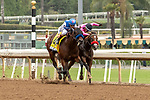 """ARCADIA, CA  SEPTEMBER 27:  #4 Bast, ridden by John Velazquez, and #3 Comical, ridden by Abel Cedillo, in the stretch of the Chandelier Stakes (Grade l) """"Win and You're In Breeders' Cup Juvenile Fillies Division"""", on September 27, 2019, at Santa Anita Park in Arcadia, CA.(Photo by Casey Phillips/Eclipse Sportswire/CSM)"""