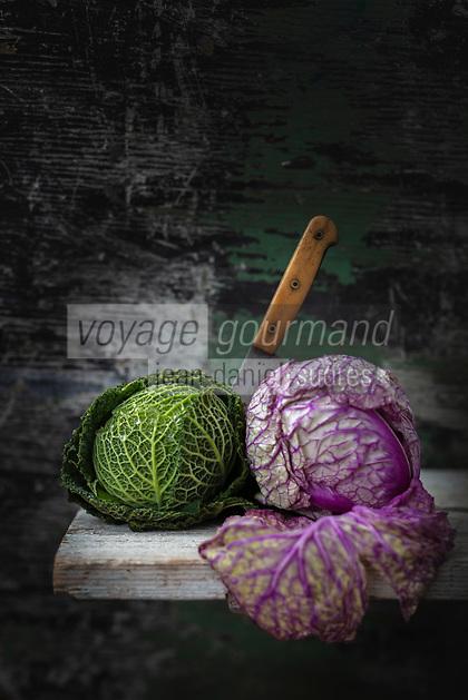 Gastronomie  Générale / Chous Pommés ou chou  cabus, vert et rouge  bio //  General Gastronomy / Cabbage or cabbage cabbage, green and red organic