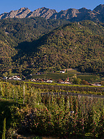 bei Parkplatz Töll, Oberplars, Algund bei Meran, Region Südtirol-Bozen Italien, Europa<br /> near parking Töll, Oberplars, Lagundo near Merano, Region South Tyrol-Bolzano, Italy, Europe