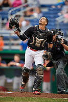 Batavia Muckdogs catcher Igor Baez (29) looks for a foul ball popup in front of home plate umpire Thomas Fornarola during a game against the Lowell Spinners on July 14, 2018 at Dwyer Stadium in Batavia, New York.  Lowell defeated Batavia 8-4.  (Mike Janes/Four Seam Images)