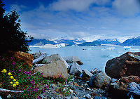 Alsek Lake