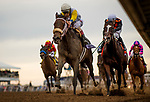 DEL MAR, CA - NOVEMBER 03: Forever Unbridled #6, ridden by John Velazquez  overtakes Paradise Woods in the stretch run of the Breeders' Cup Distaff at Del Mar Thoroughbred Club on November 03, 2017 in Del Mar, California. (Photo by Alex Evers/Eclipse Sportswire/Breeders Cup)