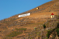 Painted sign black on white E Guigal, the biggest producer in the area, and a small tool shed. Terraced vineyards in the Cote Rotie district around Ampuis in northern Rhone planted with the Syrah grape. Ampuis, Cote Rotie, Rhone, France, Europe