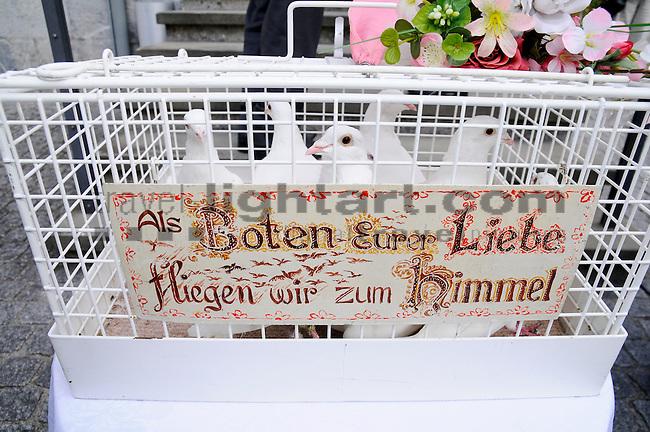Wedding, Hochzeit, Tauben, Pidgeons,