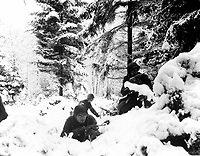 American infantrymen of the 290th Regiment fight in fresh snowfall near Amonines, Belgium.  January 4, 1945.  Braun.  (Army)<br /> NARA FILE #:  111-SC-198534<br /> WAR & CONFLICT BOOK #:  1077