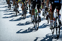 pedaling shadows<br /> <br /> Heistse Pijl 2020<br /> One Day Race: Heist-op-den-Berg > Heist-op-den-Berg 190km  (UCI 1.1)<br /> ©kramon