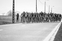 Peloton up the Goeberg<br /> <br /> 1st Dwars door West-Vlaanderen 2017 (1.1)