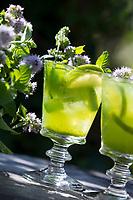 Wasserminze-Limonade, Limonade mit Wasserminze, Eis, Zitronen, Erfrischungsgetränk, Limo, Getränk, Wasserminze, Wasser-Minze, Minze, Mentha aquatica, Horsemint, Water Mint, Lemonade, Menthe aquatique