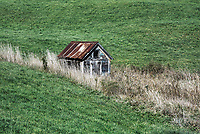 Small farm shed in rolling green pasture, Topsham, Vermont, USA.