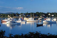 lobster boats, Bass Harbor, Mount Desert Island, ME, Maine, View of lobster fishing boats buoyed in the harbor in the fishing village of Bass Harbor on the Atlantic Ocean.