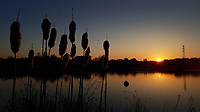 Pictured: The sun sets over a pond in the Five Lakes Resort near Colchester, England, UK.<br /> Re: Sunshine and high temperatures has been experienced by most pats of the UK during the Easter Bank Holiday Weekend.