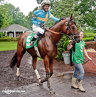 Papa Carlos with Hillevi Ljungqvist aboard before The International Ladies Fegentri Race at Delaware Park on 6/10/13