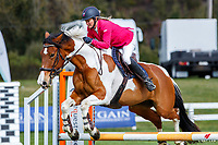 Class 12: Fibre Fresh Introductory Horse 90cm A2. 2020 NZL-Hygain Feeds Rotorua Spring Show. NEC Taupo. Saturday 26 September. Copyright Photo: Libby Law Photography