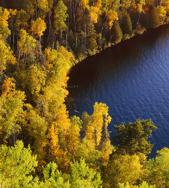 Gunflint Lake; fall color; Boundary Waters Canoe Area Wilderness; Minnesota