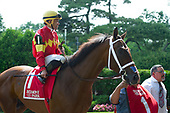 7th Tremont Stakes - Fore Left