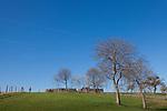 Europa, DEU, Deutschland, Hessen, Taunus, Typische Landschaft, Frühjahr.  Kategorien und Themen, Natur, Umwelt, Landschaft, Jahreszeiten, Stimmungen, Landschaftsfotografie, Landschaften, Landschaftsphoto, Landschaftsphotographie, <br /> <br /> [Fuer die Nutzung gelten die jeweils gueltigen Allgemeinen Liefer-und Geschaeftsbedingungen. Nutzung nur gegen Verwendungsmeldung und Nachweis. Download der AGB unter http://www.image-box.com oder werden auf Anfrage zugesendet. Freigabe ist vorher erforderlich. Jede Nutzung des Fotos ist honorarpflichtig gemaess derzeit gueltiger MFM Liste - Kontakt, Uwe Schmid-Fotografie, Duisburg, Tel. (+49).2065.677997, archiv@image-box.com, www.image-box.com]