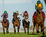 September 18, 2021: Town Cruise #1, ridden by jockey Daisuke Fukumoto wins the Grade 1 Ricoh Woodbine Mile Stakes on the turf at Woodbine Racetrack in Toronto, Ontario Canada on September 18th, 2021. Scott Serio/Eclipse Sportswire/CSM