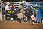 SEBRA - Gordonsville, VA - 7.8.2017 - Mutton Busting