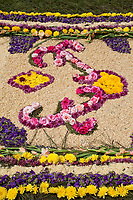 Antigua, Guatemala.  Detail of an  alfombra (carpet) of flowers, pine needles, and other traditional materials decorating the street in advance of the passage of a procession during Holy Week, La Semana Santa.