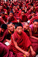 Overview of a group of novice Buddhist monks in traditional attire at the Drepung Monastery. Lhasa, Tibet.