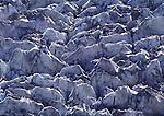 Rongbuk Glacier, Tibet