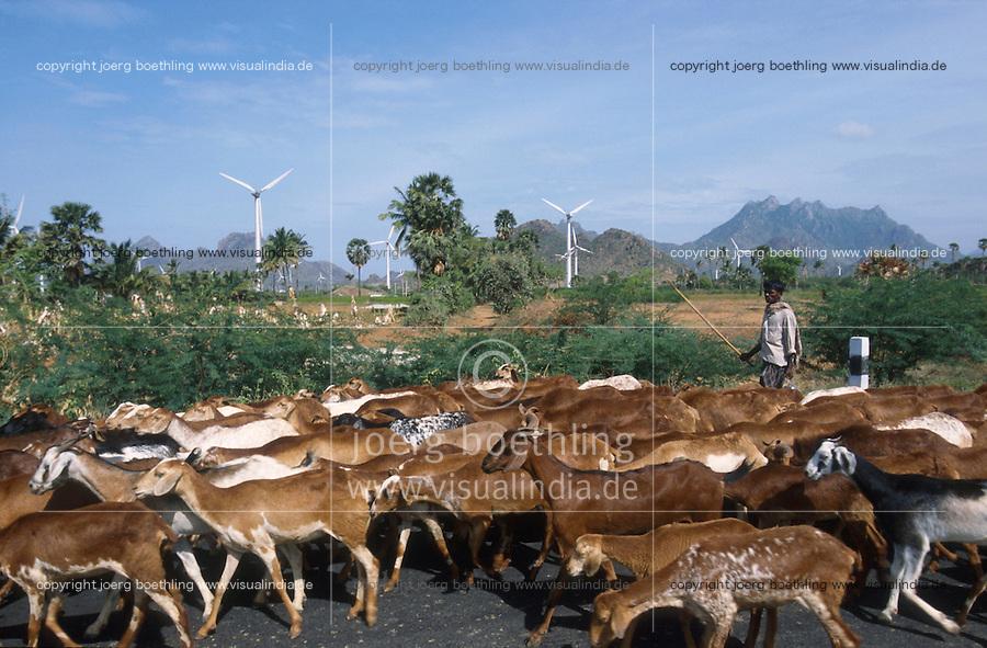 INDIA, Tamil Nadu, Kanyakumari, Cape Comorin, Muppandal, windfarm with wind turbine, goats on the road / INDIEN Kanniyakumari, Kap Komorin, Windpark mit Windkraftanlagen, Ziegenherde auf Strasse
