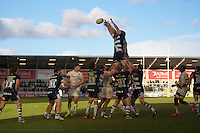 21.02.2015.  Sale, England.  Aviva Premiership Rugby. Sale Sharks versus Saracens. Sale Sharks prop Alberto de Marchi wins a lineout.