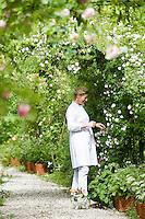 Portrait of Grazia Adamo Giovannetti pruning the roses in her rose garden