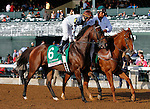 October 13, 2015:  Yahilwa in the Spinster Stakes at Keeneland on  10/04/15.  Candice Chavez/ESW/CSM