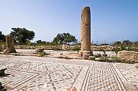 Agias Trias bei Sipahi, Basilikaerbaut 550, Mosaik, Nordzypern