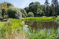 Wild life pond, Alnwick, Northumberland.